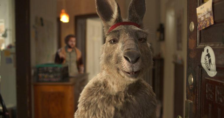 Für eine beachtliche Gage spielt sich das Känguru selbst